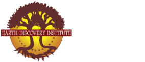 Earth Discovery Logo